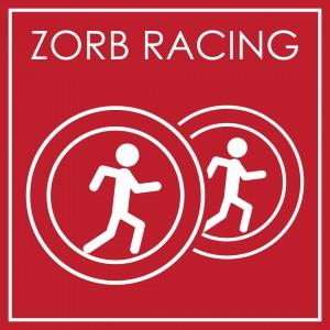 ZORB RACING-01